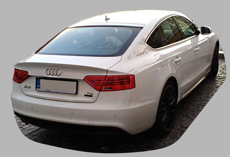 audi-a5-8t-first-generation-back.jpg