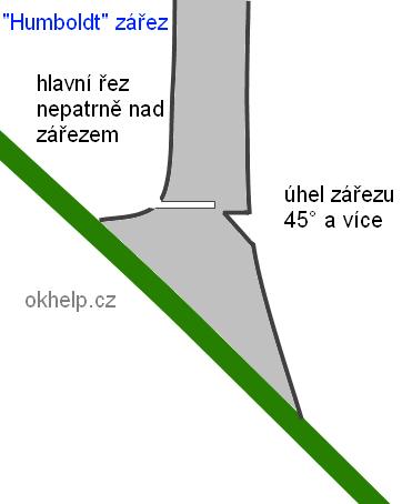 humboldt-zarez-kaceni-stromu.png