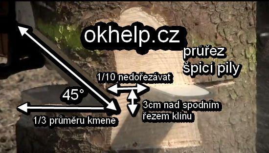 kaceni-stromu-motorovou-pilou.jpg