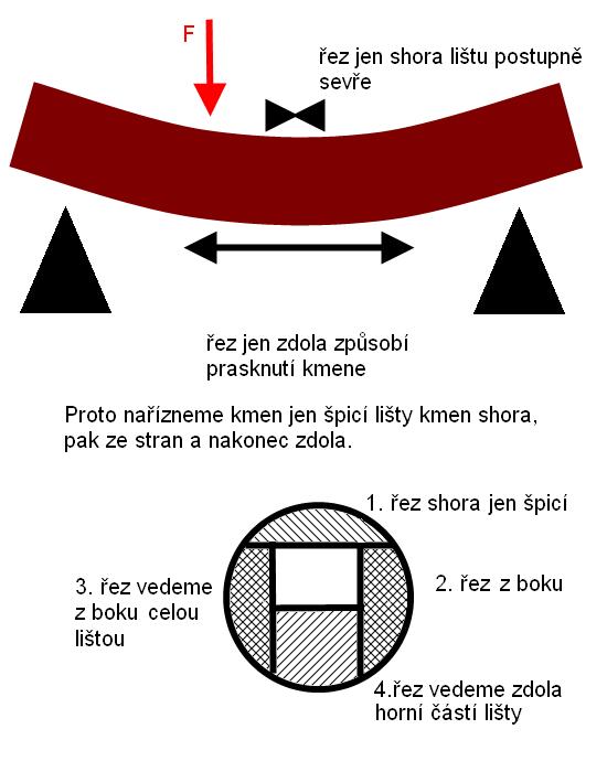 rezani-kmene-na-ktery-pusobi-sila-prohnuti.png