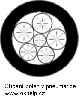 stipani-polen-v-pneumatice.png