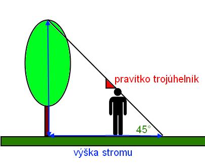 urceni-vysky-strom-pomoci-trojuhelniku.png