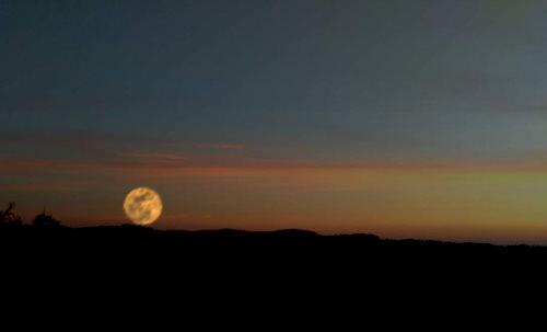 proc-se-mesic-zda-vetsi-kdyz-je-tesne-nad-horizontem-1.jpg